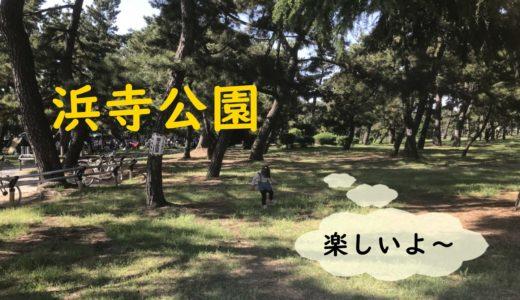 大阪の浜寺公園に気軽に出かけよう!ゴーカートがオススメ!